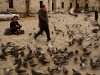 Птици и хора